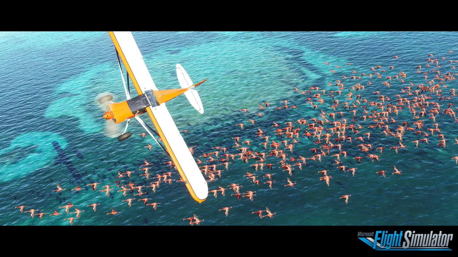 Легендарная игра MS Flight Simulator возвращается спустя 12 лет ms flight simulator,авиасимуляторы,Игры