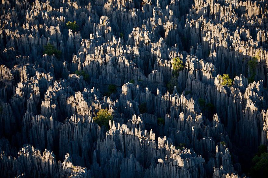 15. Каменный лес, Мадагаскар красота, пейзажи, природа