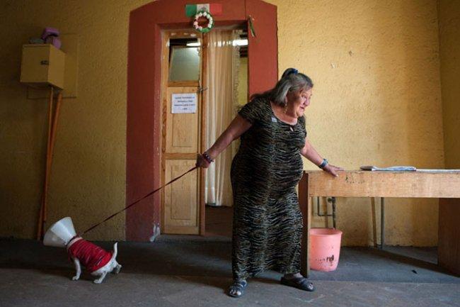 Дом престарелых для бывших работниц секс-индустрии (10 фото)