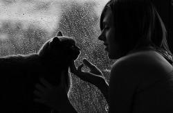 Магия кошек - факты и домыслы