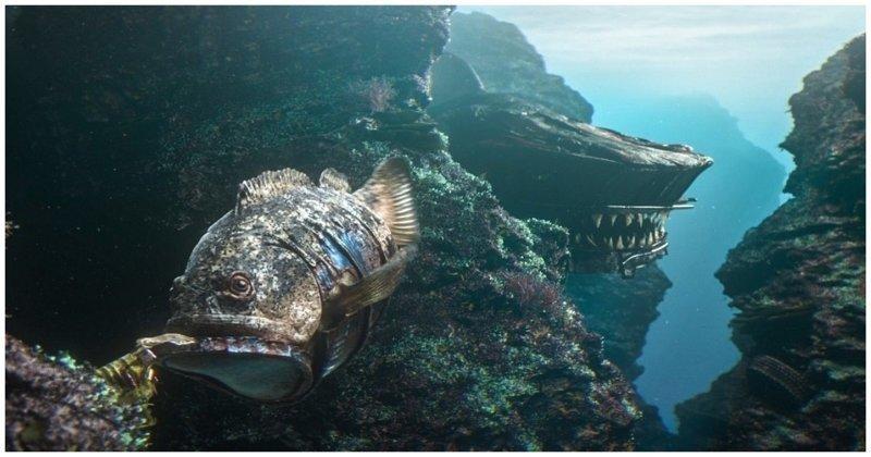 Океан нашего будущего: оригинальный взгляд на последствия загрязнения подводного мира