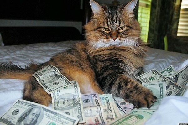 Коты в народных поверьях занимают очень важное место