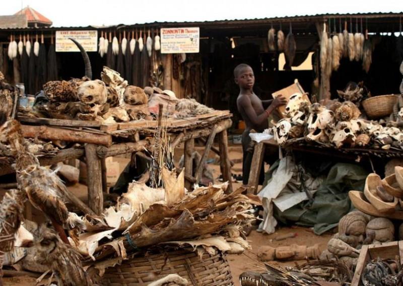 10. Магический рынок Акодессева, Того интересное, история, поучительное, факты