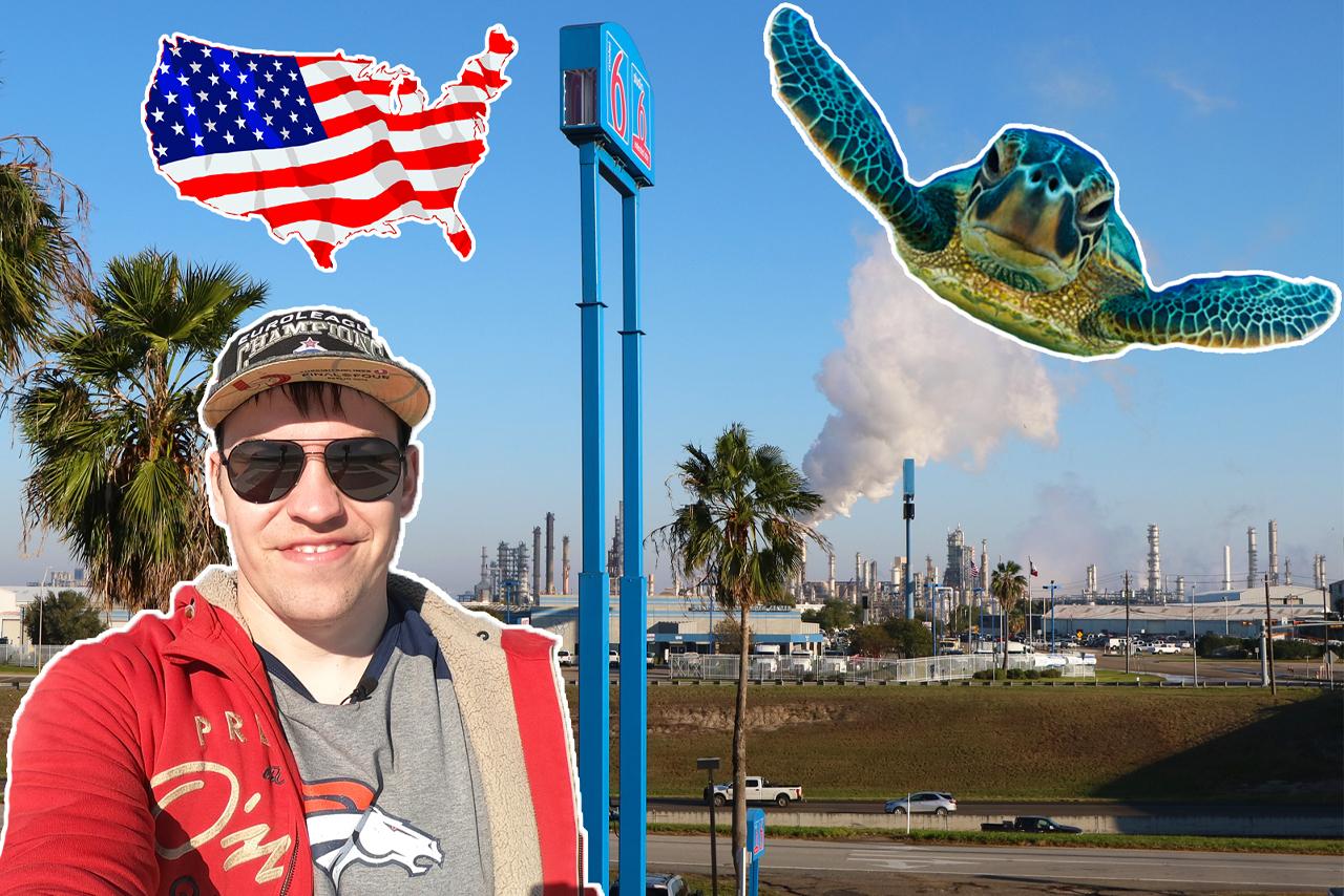 Освобождение морских черепах в Техасе