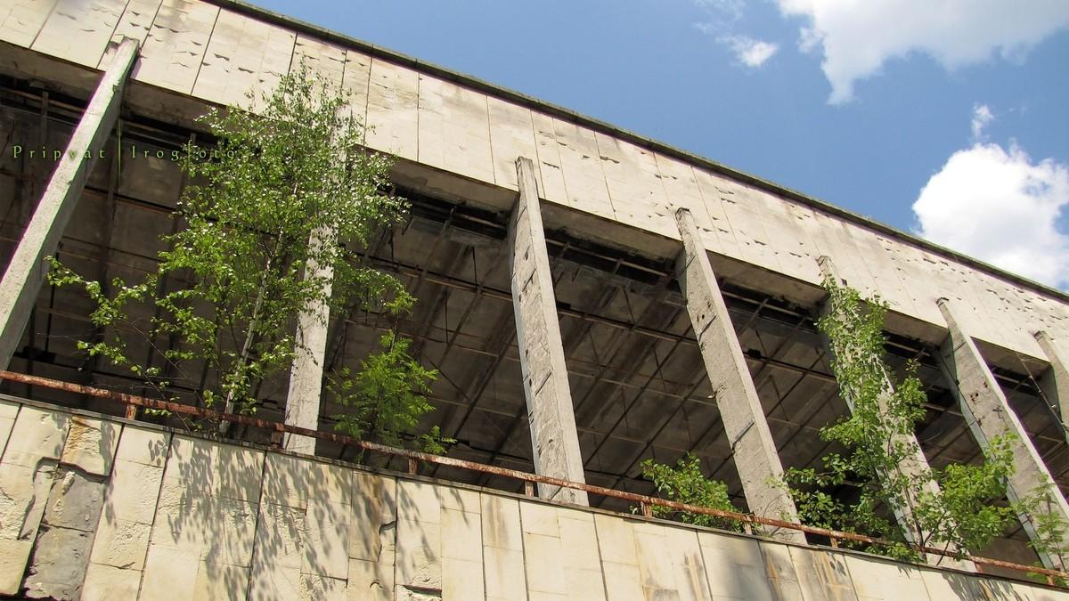 Природа Чернобыля вновь оживает