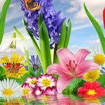 Гороскоп для милых дам к 8 марта