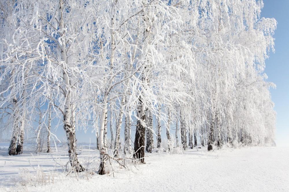 ваенга красивая зима россии фото всего