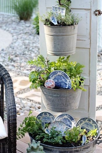 Old Plates Decorate Flowers in Galvanized buckets: