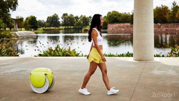 Второе поколение робота-носильщика Gitamini: как он выглядит