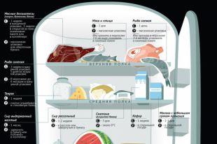 Как хранить продукты в холодильнике. Инфографика