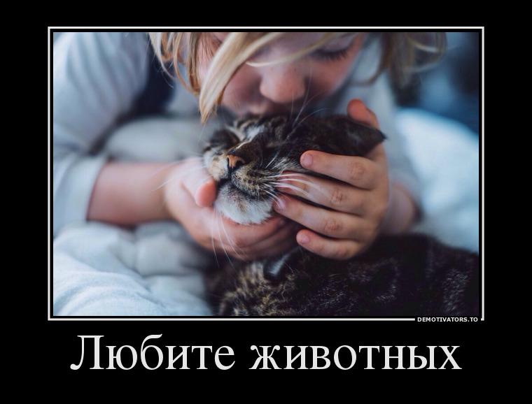 Любите животных!