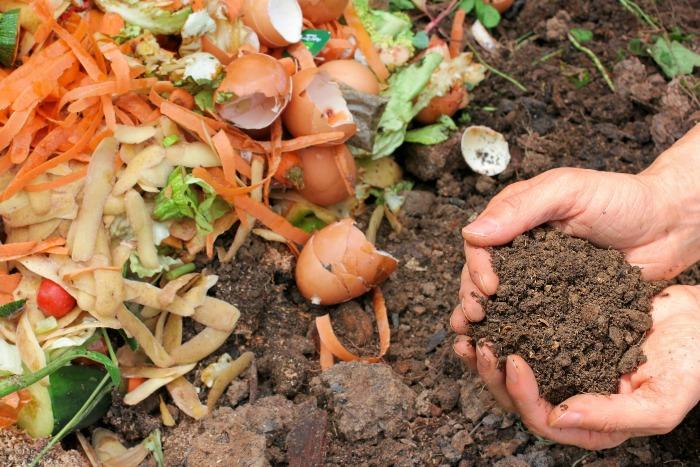 Праздничные отходы весной на огороды!