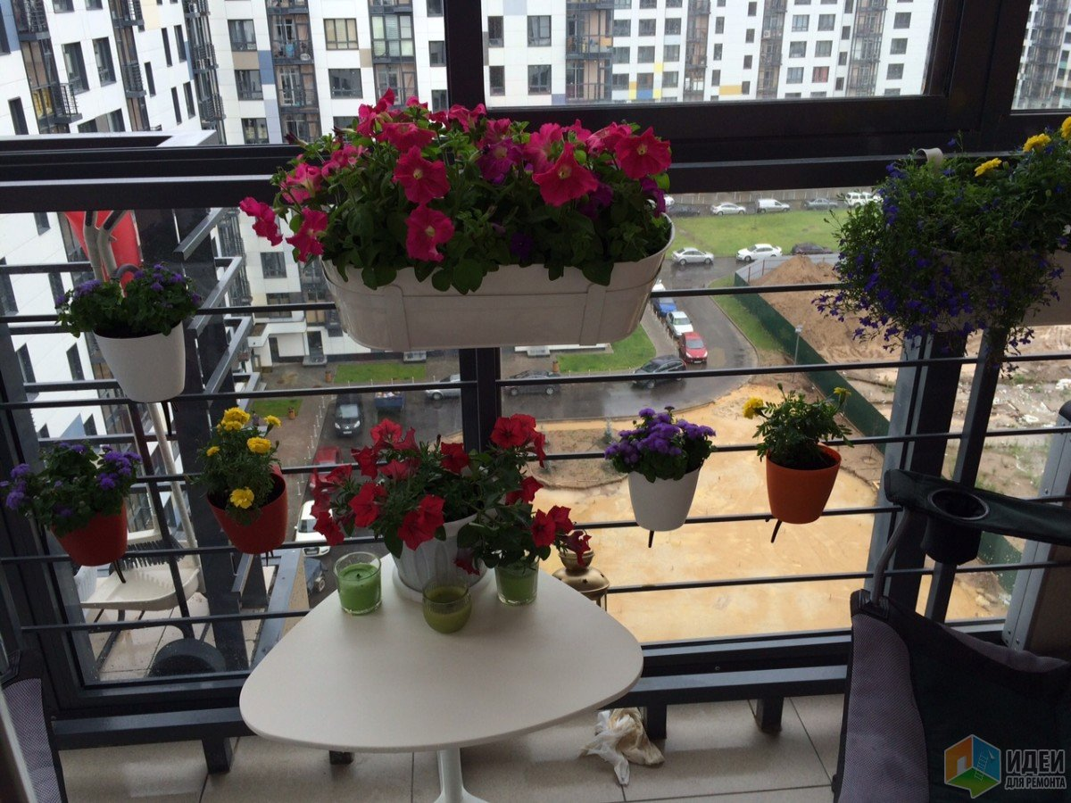 Уютный балкон фото, цветы на балконе