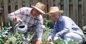 Работы в саду и огороде в апреле