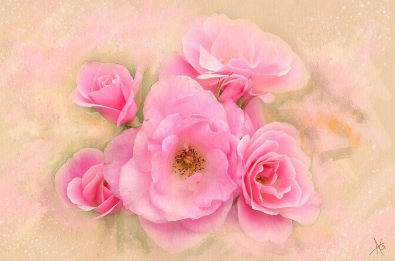 Красивые цветы Alberto Guillen