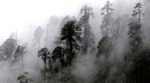 Топ-25: самые глухие и удаленные от цивилизации места на планете