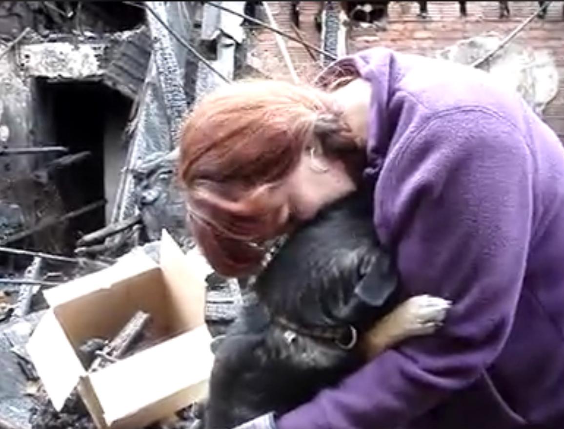 Она говорила своей собаке, что их дом полностью сгорел. Реакция песика невероятно трогательная