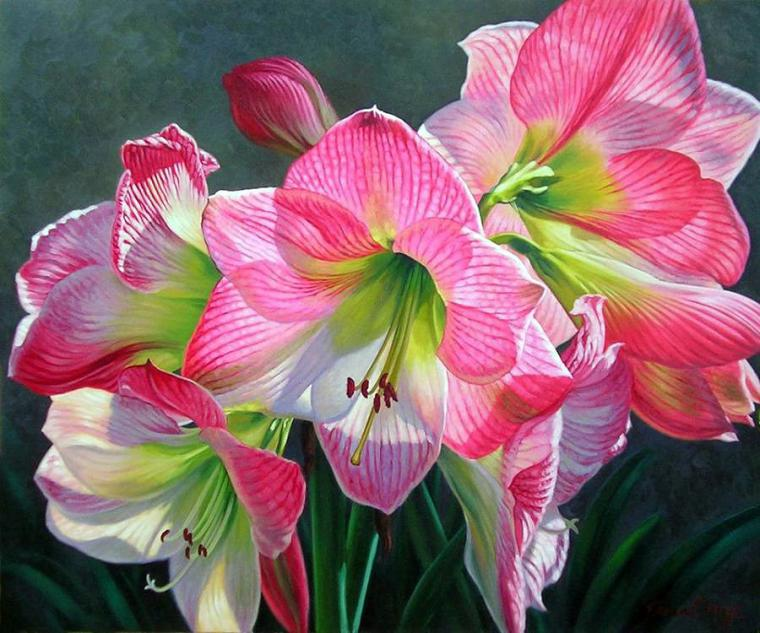Буйство красок на картинах Fiona Craig