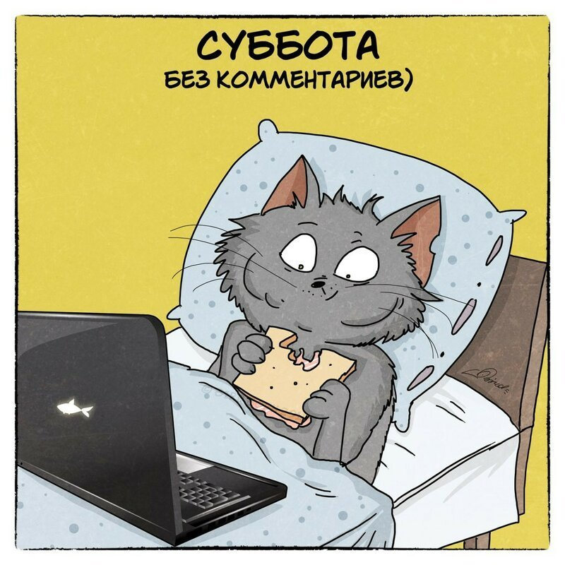 Типичная трудовая неделя в работах Bird Born забавно, иллюстрация, кот, кошки, рисунок, художник, юмор