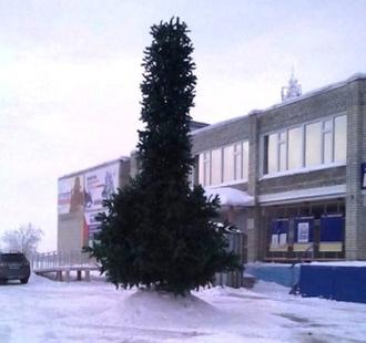 Латентный депутат Милонов требует убрать новогоднюю ёлку и наказать виновных