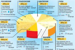 Какой сыр лучше покупать? Инфографика