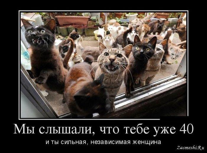 ФИЗИЧЕСКИЙ ДЕФЕКТ, КОТОРЫЙ С…