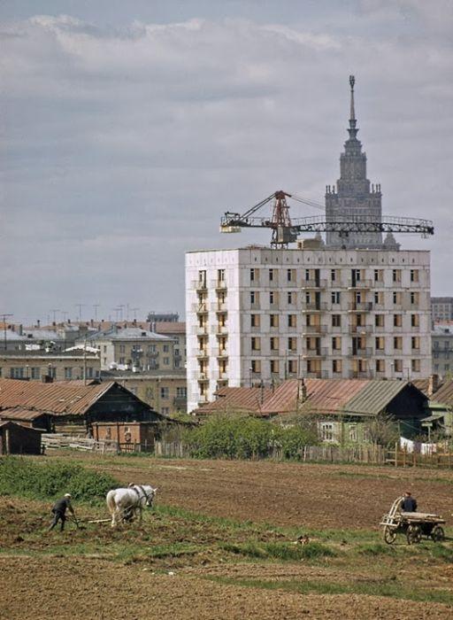 Землепашцы деревни Семёновское