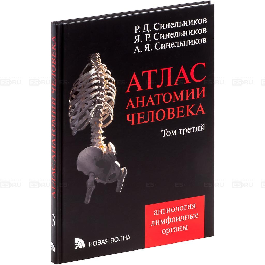 Атлас анатомии человека 12
