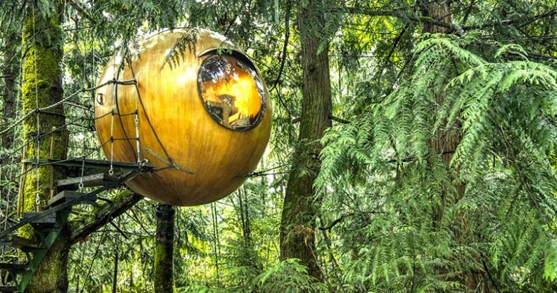 Потрясающий отель для тех, кто любит домики на деревьях