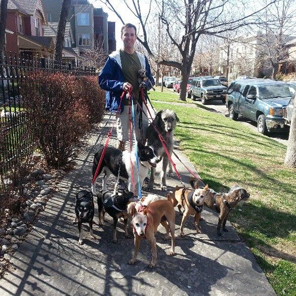 Мужчина забирает старых больных собак из приюта, у которых нет шанса обрести новый дом