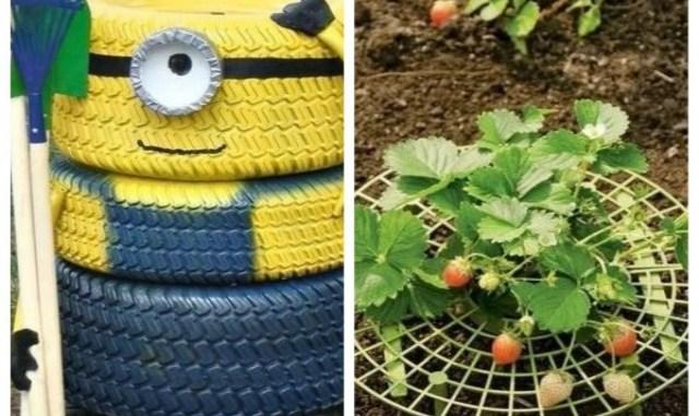 Подборка садовых идей