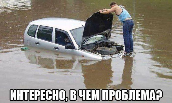 Порция автомобильного юмора