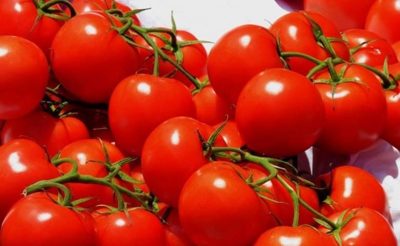 Самые вкусные рецепты салатов на зиму из помидоров заготовки,консервируем