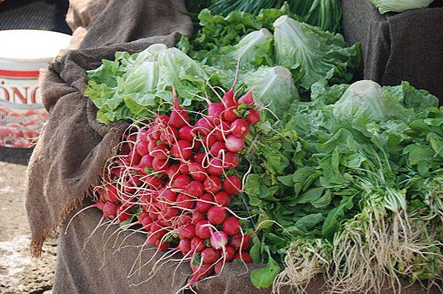 Дары весны: какие овощи первыми дают урожай