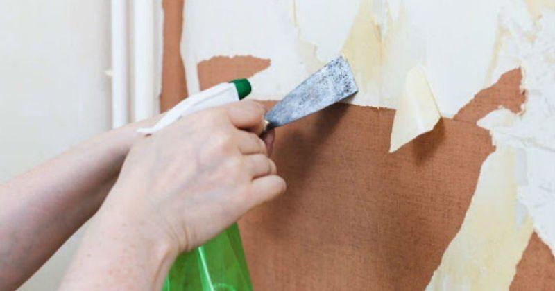 Как просто снять старые обои со стен? Сделайте три лёгких шага