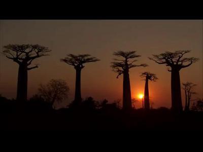 Мадагаскар. Край жары и пыли (ч.2)