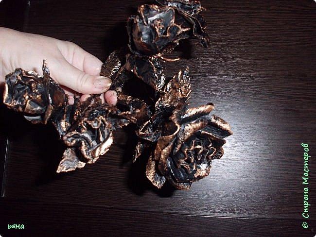 Мастер-класс Бумагопластика Кованая роза из туалетной бумаги Бумага Диски ватные Клей Краска Проволока фото 2
