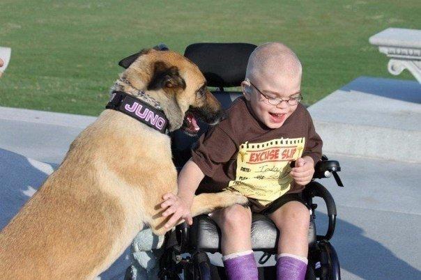 Мальчик неизлечимо болен, а собака обречена на смерть. Но вместе они сумели спасти жизнь друг другу
