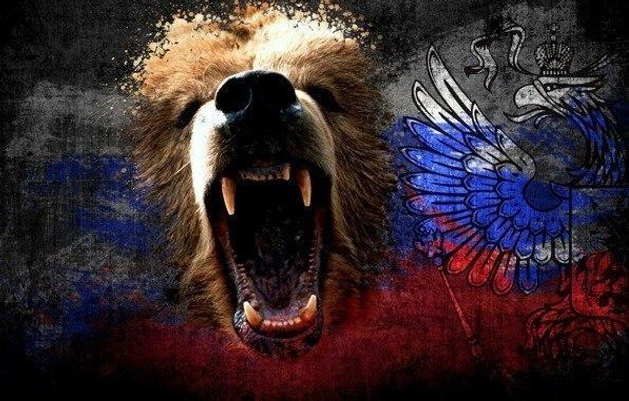 Картинки на телефон россия медведь, картинки