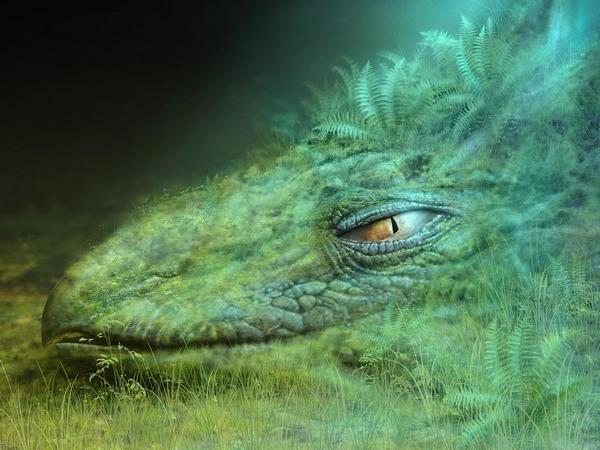 Зеленый дракон удачи