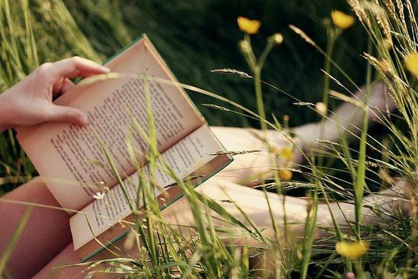 Библиотека на траве открывает новыйсезон