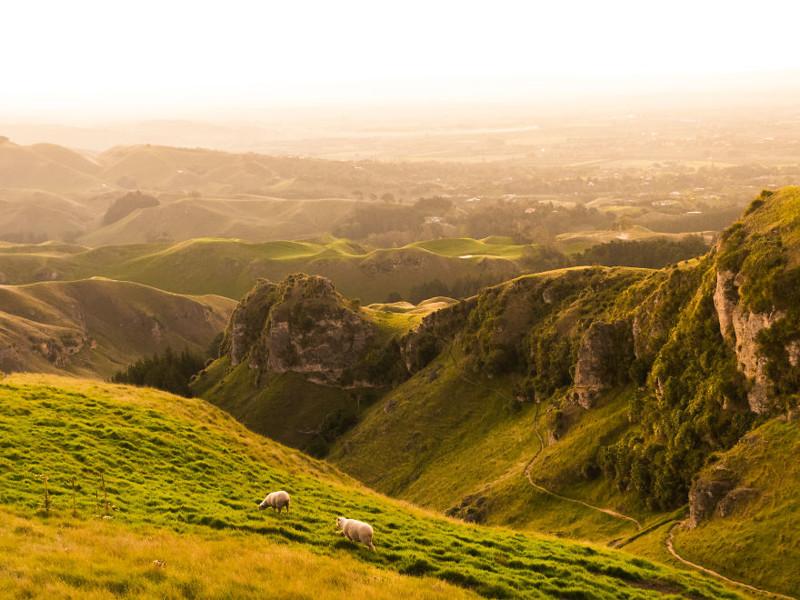 Красота и великолепие Новой Зеландии: фотопутешествие