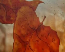 Осенний дождь - Autumn rain