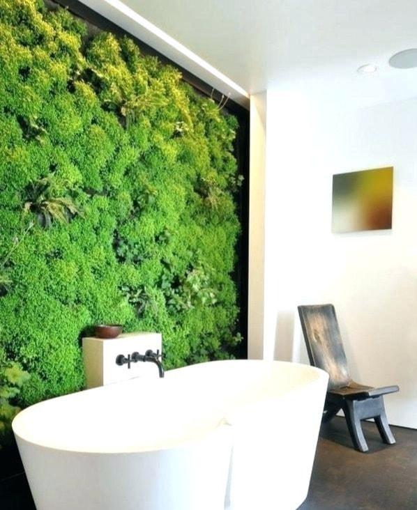 Как оформить зелёную стену из растений в доме: 14 идей
