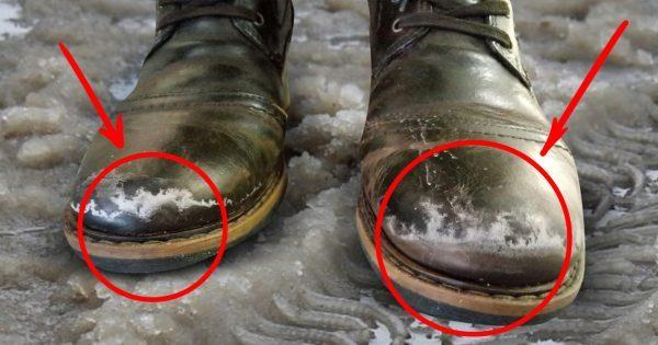 Ухаживай за обувью зимой пра…