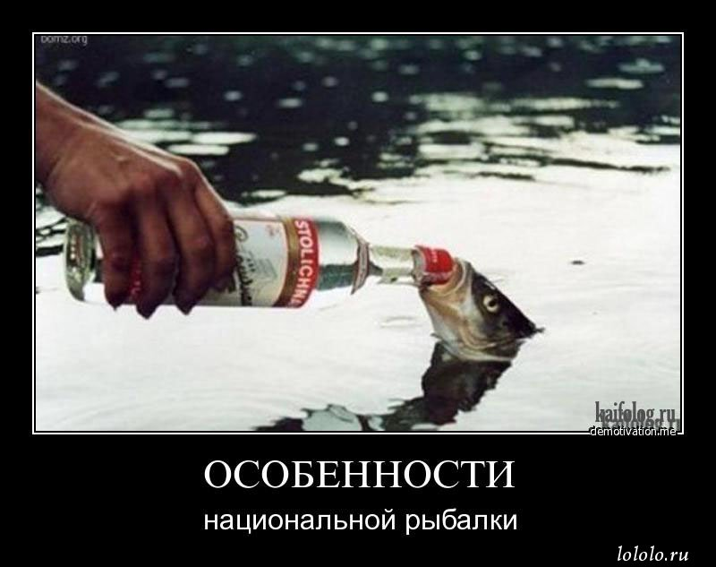 Здесь рыбы нет