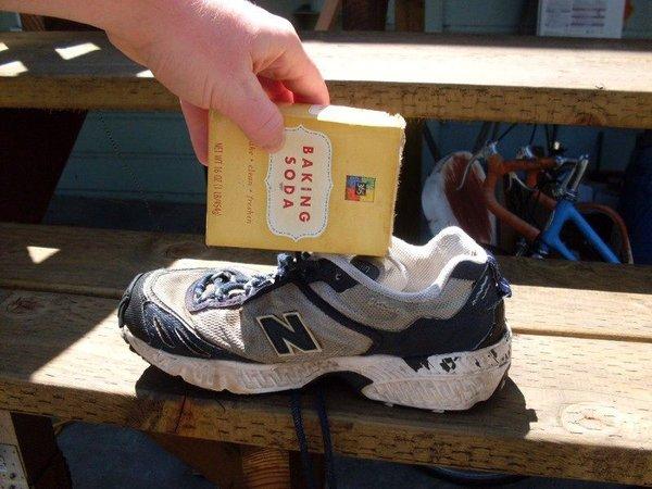 Как удалить запах кошачьей мочи из обуви