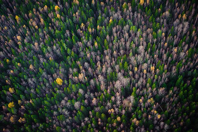 Россия в лучших фотографиях клуба National Geographic