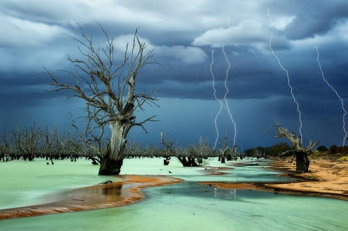 Гроза - одно из самых красивых природных явлений