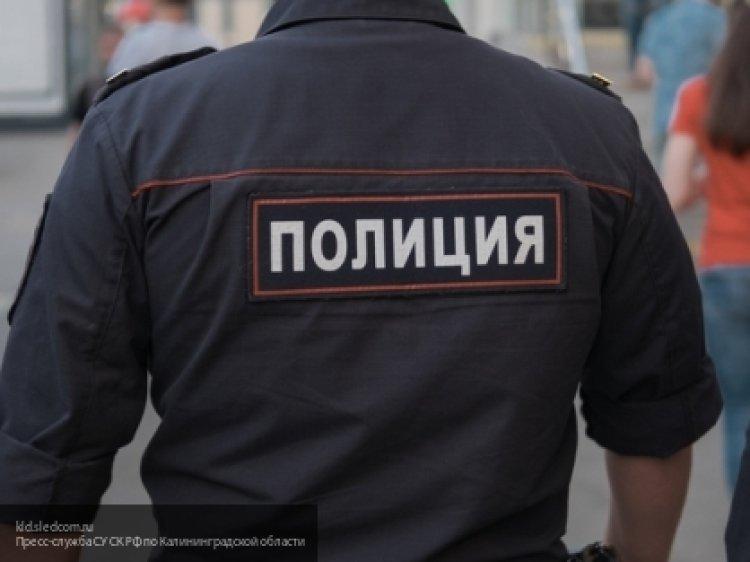 На псковича завели уголовное дело за оскорбление полицейского
